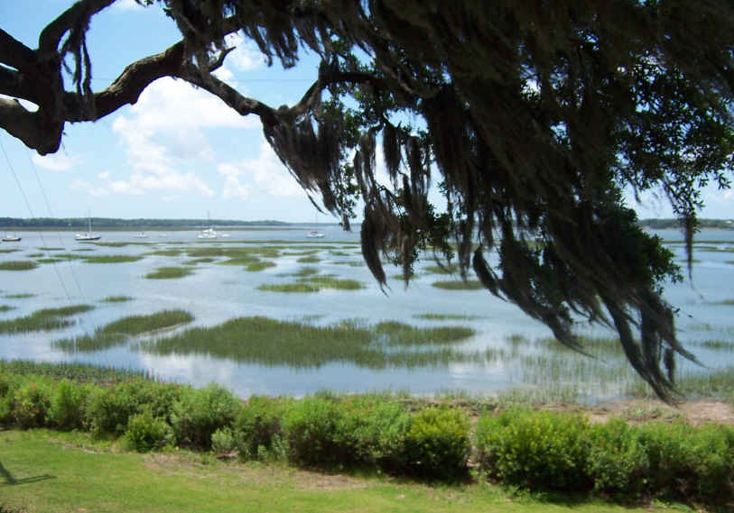 Port Royal is close enough to bike into downtown Beaufort. Beaufort is very picturesque with the huge oak trees and hanging Spanish moss.