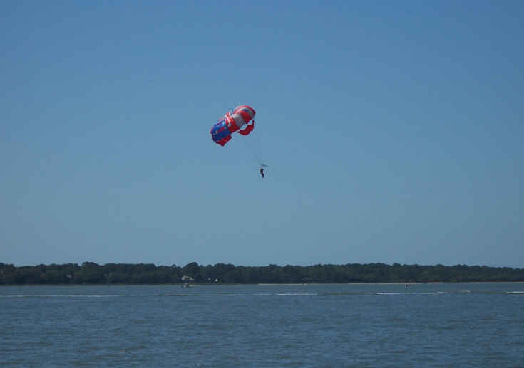 Saw a few dolphins swimming, lots of water birds, and passed a Para sailor in the sky around Hilton Head Island.