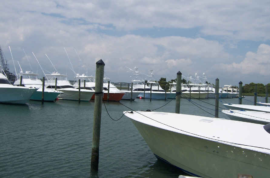 June 11 big rock marlin tournament morehead city nc for Morehead city fishing